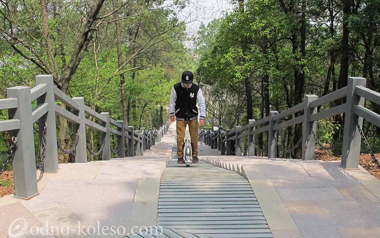 В Тропарёвском парке, москвы пропала 10-летняя немая