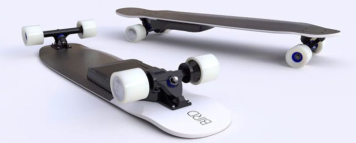 bird electric board